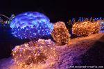 b_150_100_16777215_00_images_salajland_salajlandchristmaslight.jpg