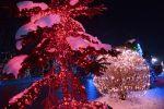 b_150_100_16777215_00_images_salajland_salajlandchristmastreelight.jpg